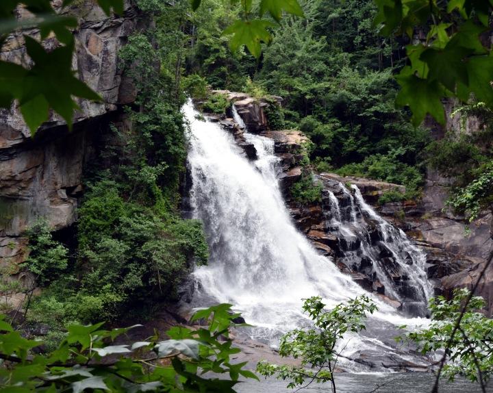 Chase Those Waterfalls: Tallulah FallsEdition